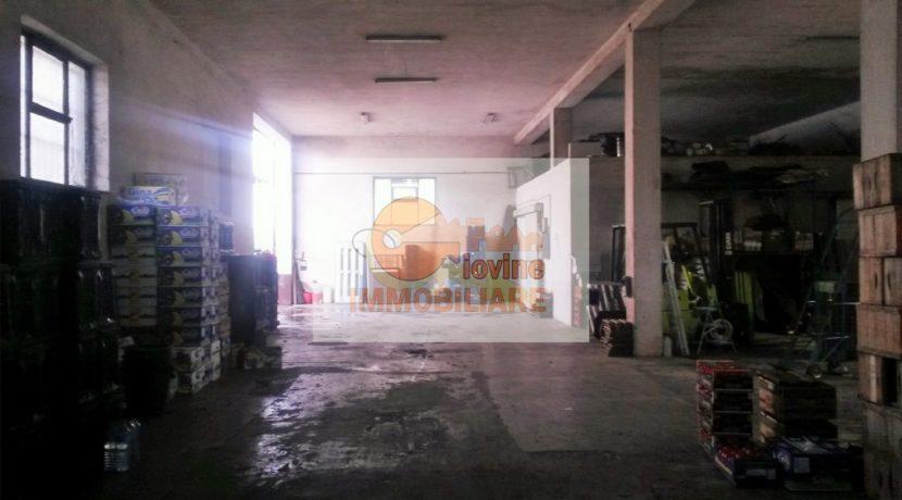 Image00007 (2) (FILEminimizer)