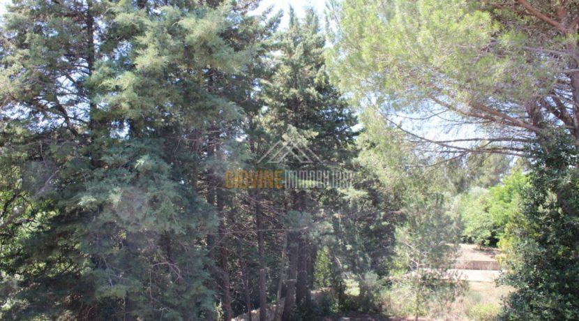 immobiliaregiovine Martina Franca Image00031